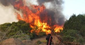 Αιτωλοακαρνανία: Συνελήφθη για τις φωτιές στην Τρύφου